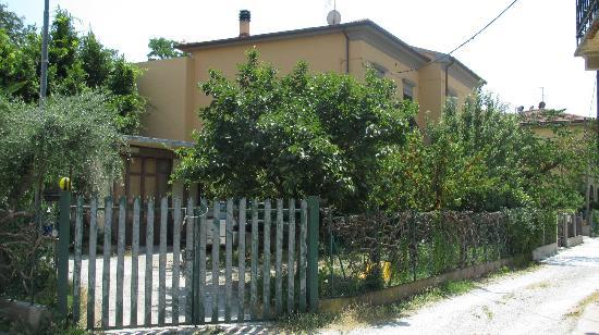 B&B Tower' s Garden : Fruit-laden trees in the garden
