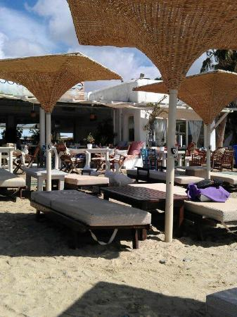 Anixi Hotel Mykonos: Ornos Beach sunbeds 10 Euros a day or 25% of our budget