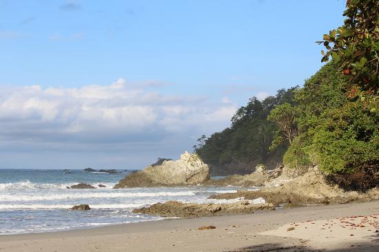 Arenas del Mar Beachfront & Rainforest Resort: Beach View