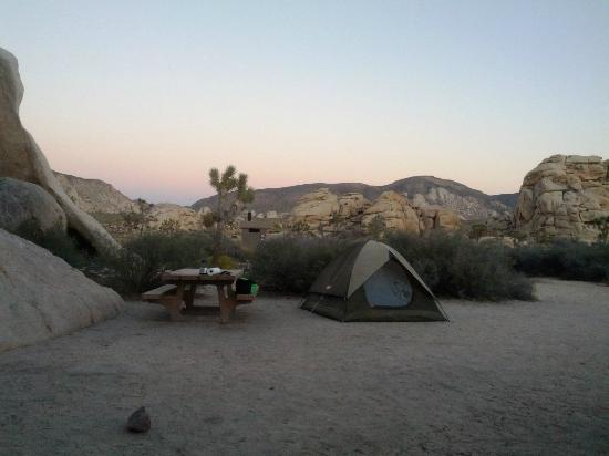 Hidden Valley Campground: Partial view of site (it's huge) - but not RV friendly