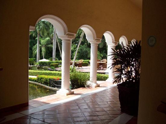 Casa Velas : Grounds