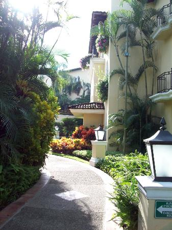 Casa Velas: Walking from our room