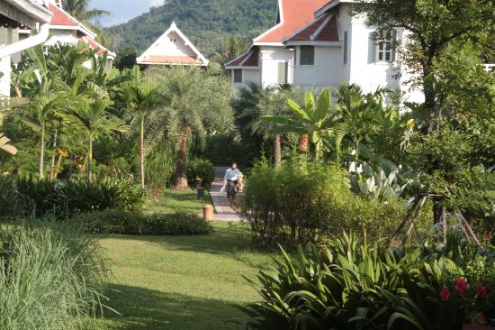 The Luang Say Residence: The immaculate gardens around the residence