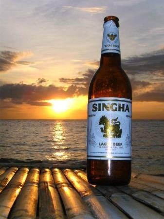 Haad Chao Phao Beach: Singa Time
