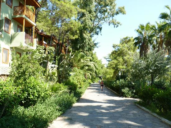Way passing the hotel - Picture of Marmaris Park Hotel ... Funny Bad Hotel Reviews