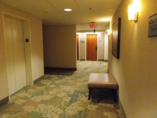 DoubleTree Club by Hilton Hotel Buffalo Downtown : Hall