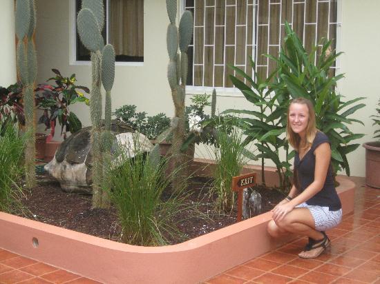 Laura @ Suites Del Sol Garden