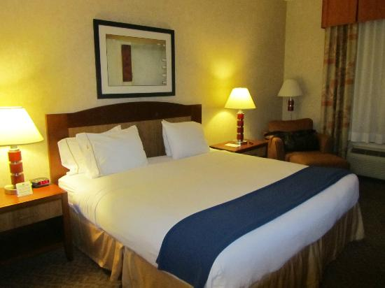 Holiday Inn Express Hotel & Suites Brampton: King size bed, Room 102