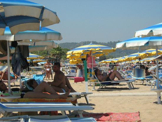 Green Park Village: La spiaggia