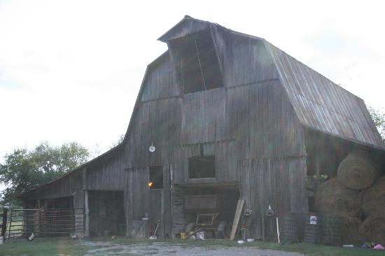 The Old Dr Cox Farm Bed & Breakfast - TEMPORARILY CLOSED: More Barn