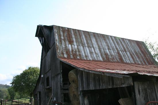 The Old Dr Cox Farm Bed & Breakfast - TEMPORARILY CLOSED: Barn
