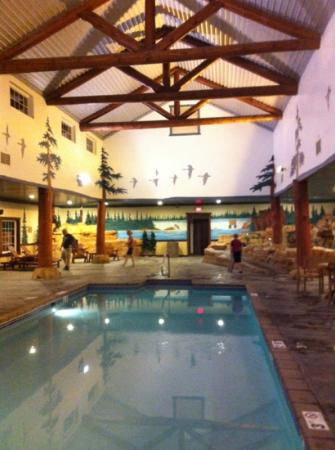 Stoney Creek Hotel Conference Center St Joseph Indoor Part Of Pool