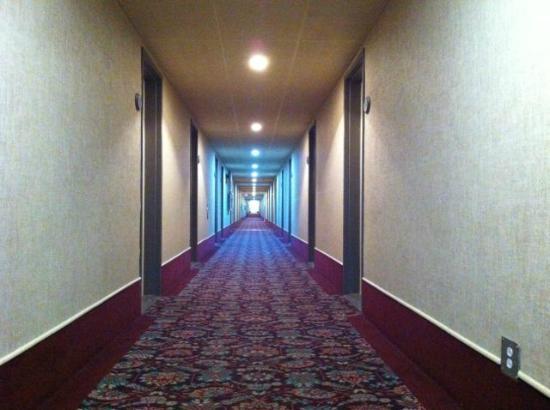 Hotel Le Comte: corridors de dortoir