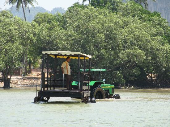Bhu Nga Thani Resort and Spa: Tractor that will lift you up and over the swamp