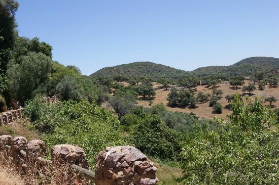 Casas Rurales el Rincon de las Tobas: Local view
