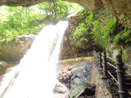 Takayama-mura, Japón: 雷滝の正面
