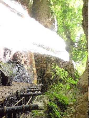 Takayama-mura, ญี่ปุ่น: 雷滝の正面