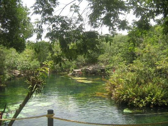 Cenote Ponderosa: Jardin del Eden 07/2012