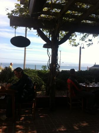 Trailside Cafe: view from patio