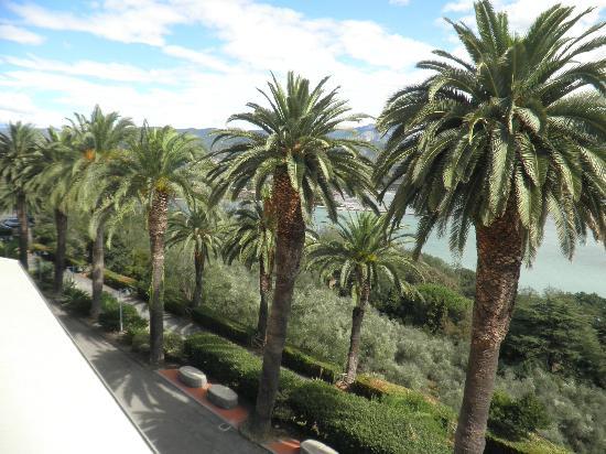 Bocca di Magra, อิตาลี: Dalla camera, il viale d'accesso