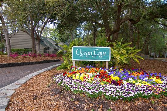 Ocean Cove Club at Palmetto Dunes: Ocean Cove