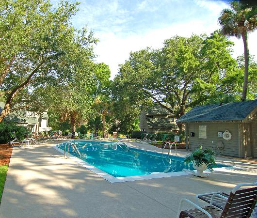Ocean Cove Club at Palmetto Dunes: Pool