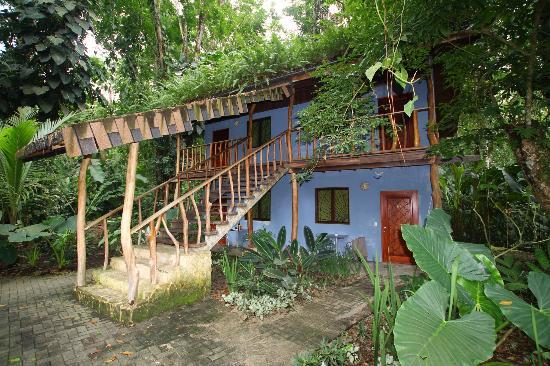 Cariblue Beach Jungle Resort Totem Hotel