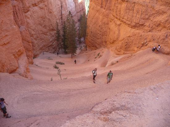 Bryce Canyon National Park: Navajo loop, bajando.