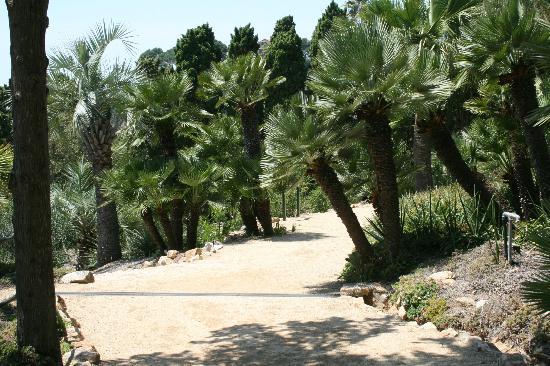 Hotel BLAUMAR: der botanische Garten