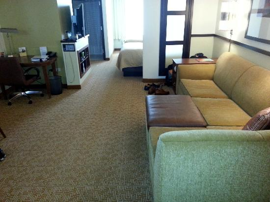 Hyatt Place Chicago/Schaumburg: Living room area of guest room
