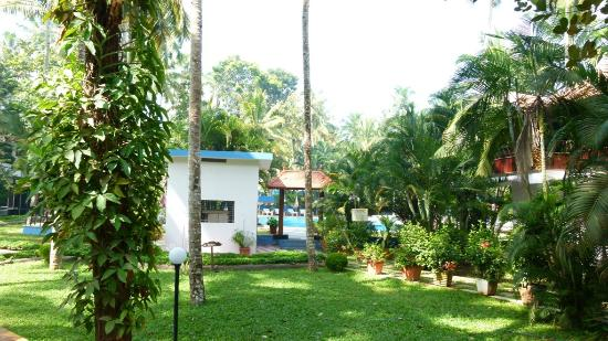 Akhil Beach Resort: Garden and Pool