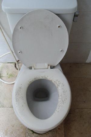 Pendawa Hotel: Toilet