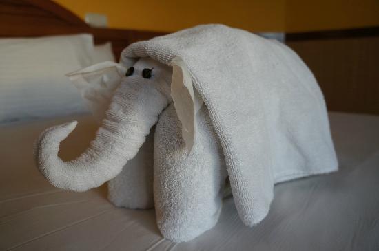Lido Sharm Hotel: Suprise