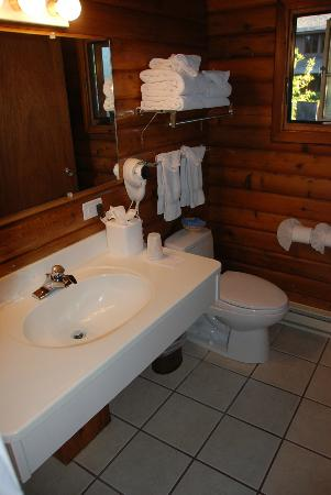 Buckrail Lodge: Bathrom sink and toilet