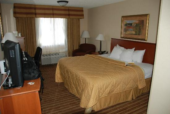 Quality Inn & Suites: Bed and decor