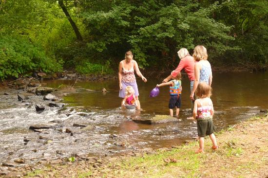 Mountain Springs Cabins: Playing in the stream