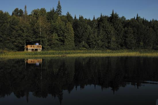 The Wild Center: Viewing decks by the Canoe Docks on the Raquette River