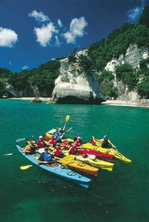 Seabreeze Holiday Park: Cathedral Cove Kayaking