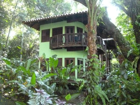 Playa Nicuesa Rainforest Lodge: Rooms