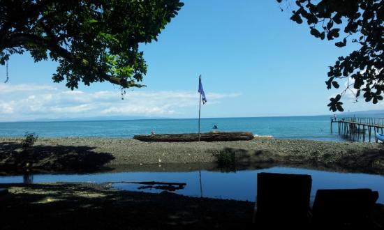 Playa Nicuesa Rainforest Lodge: Beach View 