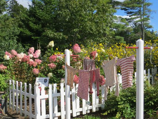 Coastal Maine Botanical Gardens: in the children's garden