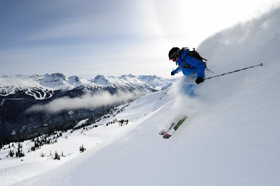 Skiing powder on Harmony Ridge on Whistler Mountain. Photo credit: Steve Rogers