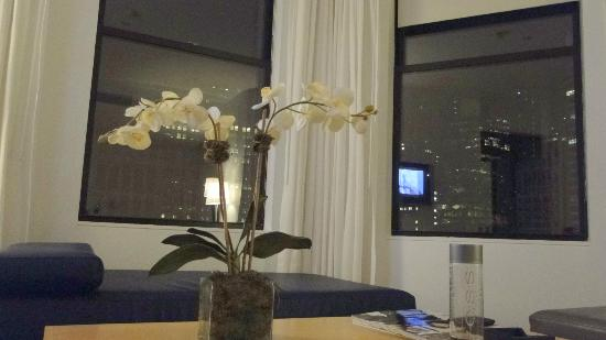 The Bryant Park Hotel : Muy moderno living con vistas