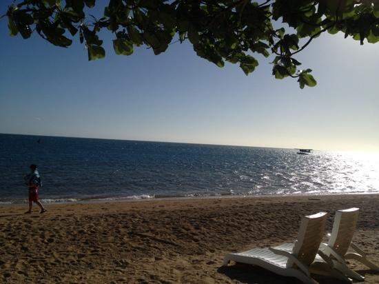 Malolo Island Resort: sea plane landing