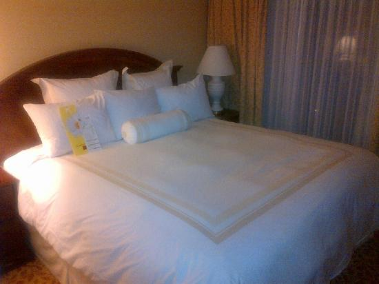 Vancouver Airport Marriott Hotel: Comfy Bed