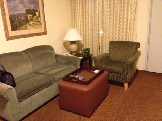 Homewood Suites by Hilton Austin South: living room