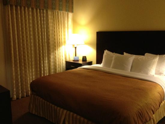 Homewood Suites by Hilton Austin South : King size bed