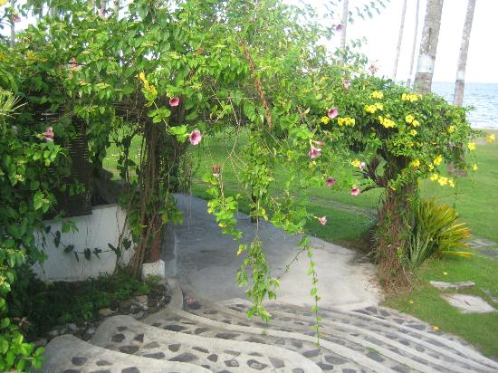Bahura Resort and Spa: flowers