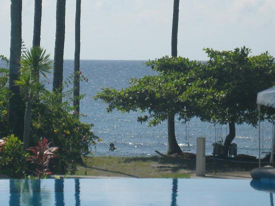 Bahura Resort and Spa: beach and swimg under tree