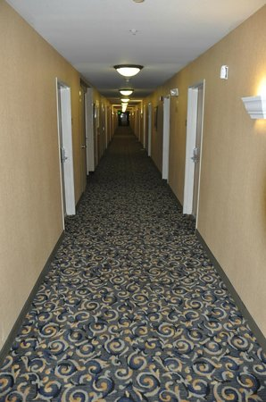 Comfort Inn Columbia Gorge Gateway: Hallway outside room